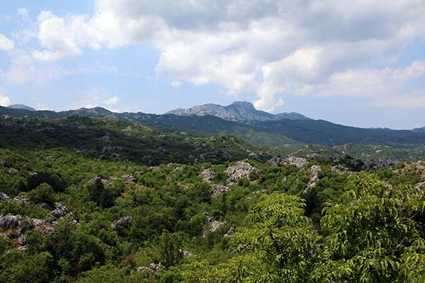Вид на гору Ловчен