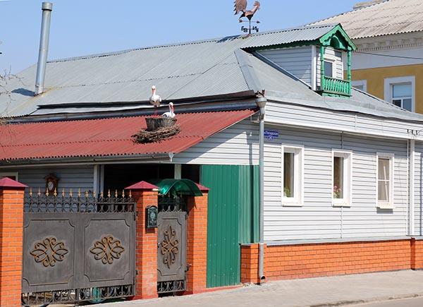 дом с аистом