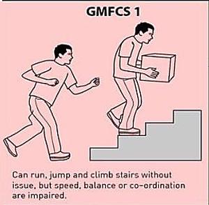 GMFCS 1