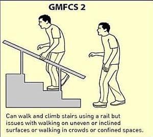 GMFCS 2