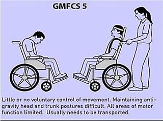 GMFCS 5