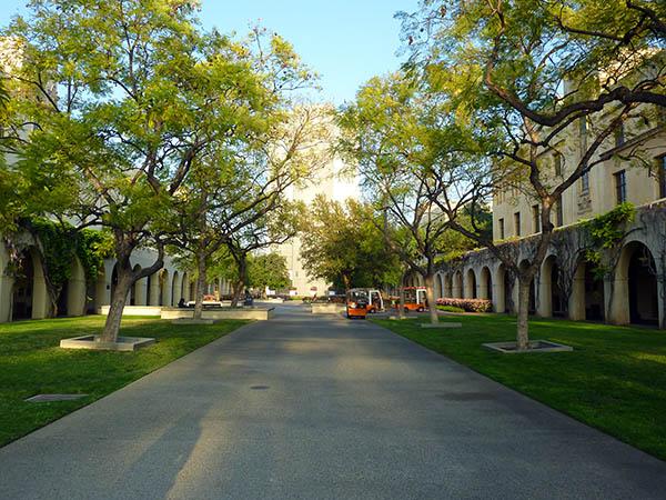парк в университетском городке